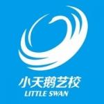 南京小天鹅文化艺术德赢体育vwin中心