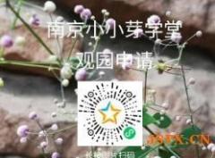 华德福南京小小芽学堂2020年秋学期观园日招募