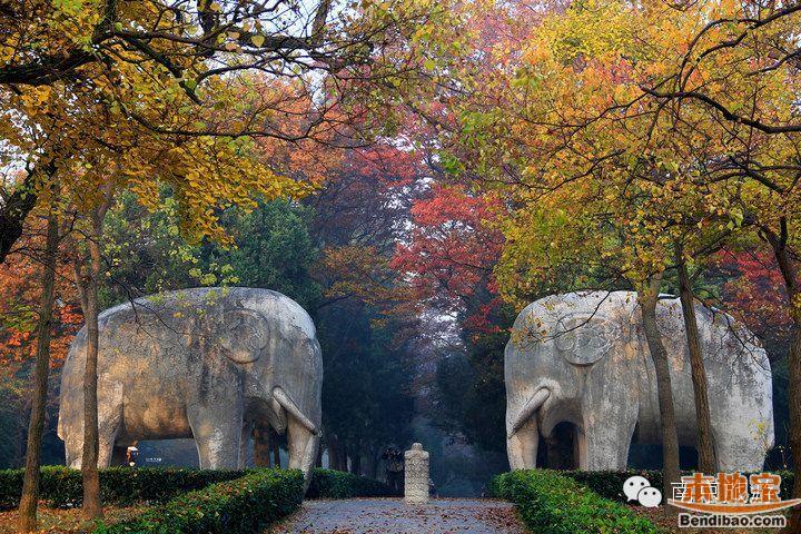 2017南京公园年卡出炉 230元可不限次游40个景点